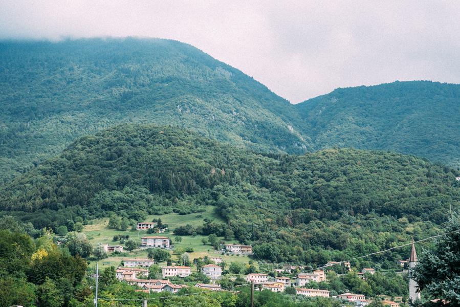 Renato_Zanette_Fotografo_Vittorio_Veneto_Azienda_Agricola_Biologica_Reghet_Ai_Piedi_Del_Cansiglio_Ovini_E_Vino